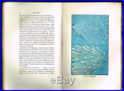 1874 Antique Book Astronomy, Celestial Maps, Color Plates, Comets Rambosson