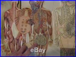 Antique Map Poster to Vintage 1922 System Anatomic Removable Human Body
